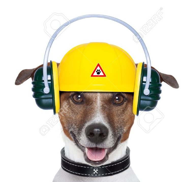 16839352-handyman-dog-work-in-progress-with-jackhammer-stock-photo-dog-hammer